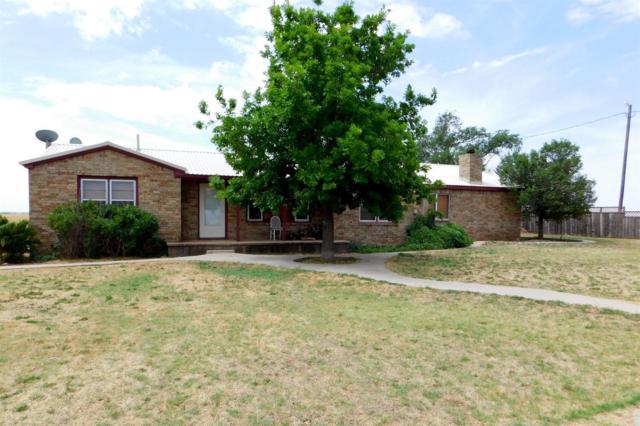 732 Farm Road 3125, Muleshoe, TX 79347 (MLS #201805090) :: Lyons Realty