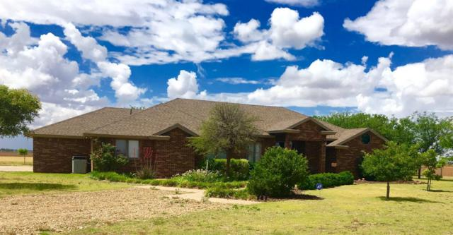 7320 E County Road 6710, Lubbock, TX 79403 (MLS #201805549) :: Lyons Realty
