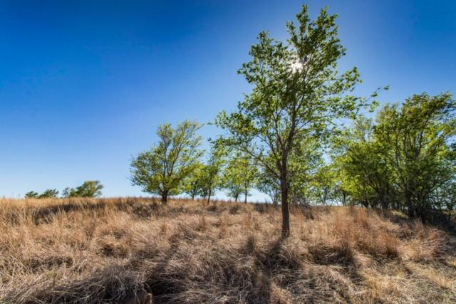 0 Us Highway 70, Other, TX 79261 (MLS #201806137) :: Lyons Realty