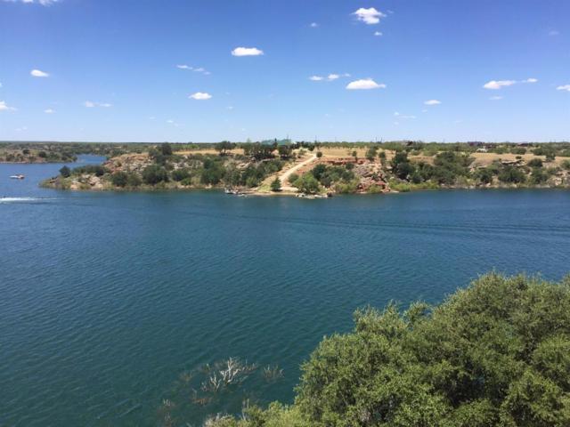 115 Ashley Road, Lake Alan Henry, TX 79330 (MLS #201806363) :: The Lindsey Bartley Team