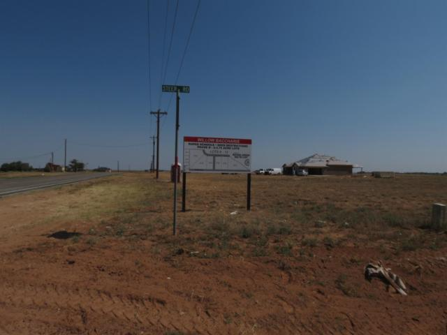0-Lot 12 Willow Baccharis, Ropesville, TX 79358 (MLS #201806937) :: The Lindsey Bartley Team