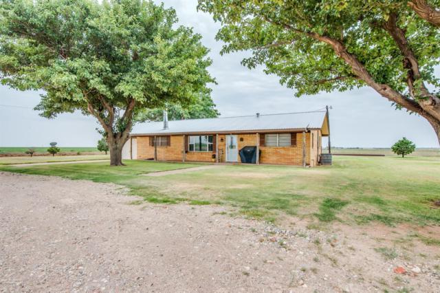 10506 County Road 5300, Shallowater, TX 79363 (MLS #201806946) :: Lyons Realty