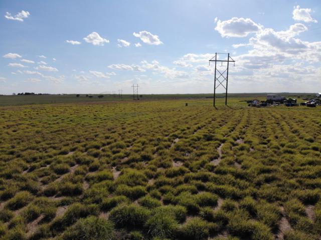 3541 Killdee Road, Wolfforth, TX 79382 (MLS #201807540) :: Lyons Realty