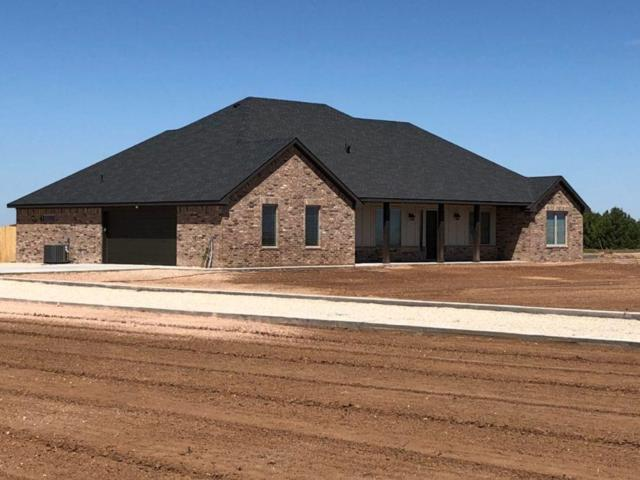 12821 N Farm Road 179, Shallowater, TX 79363 (MLS #201807670) :: Lyons Realty