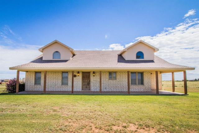 17207 County Road 1440, Wolfforth, TX 79382 (MLS #201807912) :: Lyons Realty