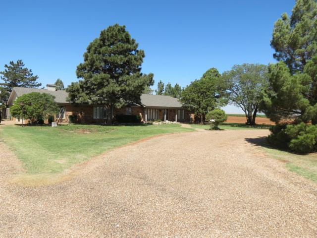 1022 State Highway 207, Ralls, TX 79357 (MLS #201808204) :: Lyons Realty