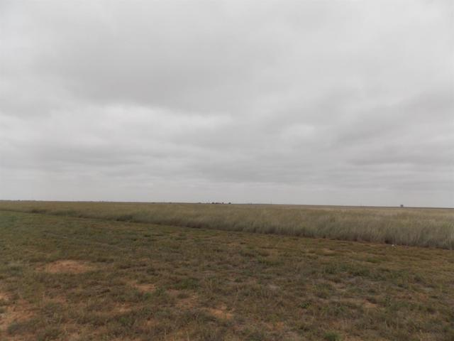 0 County Road 6400, Lubbock, TX 79343 (MLS #201808558) :: Stacey Rogers Real Estate Group at Keller Williams Realty