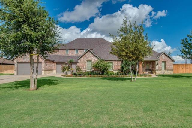 14203 County Road 1715, Lubbock, TX 79424 (MLS #201808734) :: Lyons Realty