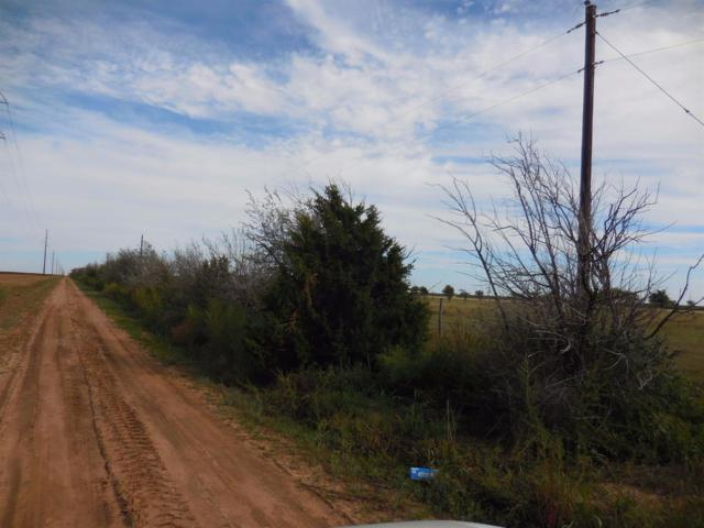 3900 County Road 6300, Idalou, TX 79343 (MLS #201808738) :: McDougal Realtors