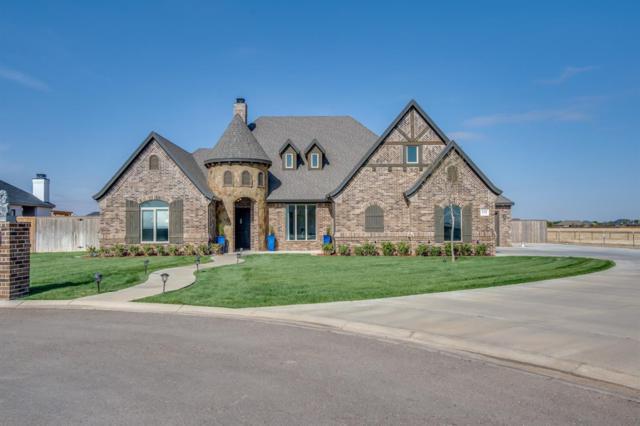 6402 County Road 1480, Lubbock, TX 79407 (MLS #201808760) :: Lyons Realty