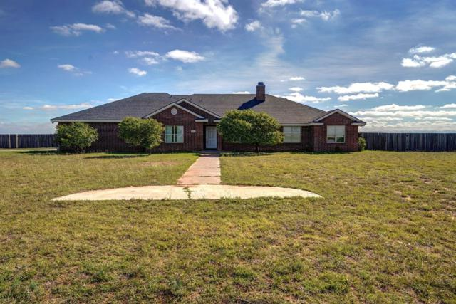 13802 N County Road 1400, Shallowater, TX 79363 (MLS #201808851) :: Lyons Realty