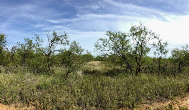 0 Farm Road 3203, Roaring Springs, TX 79256 (MLS #201809304) :: The Lindsey Bartley Team