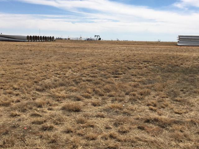 0 Farm Road 300, Sundown, TX 79372 (MLS #201809343) :: Reside in Lubbock | Keller Williams Realty