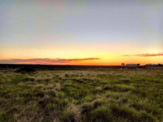 3541 Killdee Road, Wolfforth, TX 79382 (MLS #201809925) :: McDougal Realtors