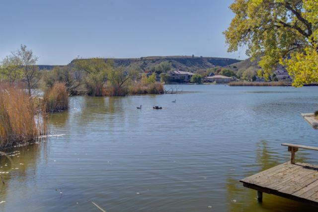 1 W Lakeshore Drive, Ransom Canyon, TX 79366 (MLS #201810006) :: The Lindsey Bartley Team