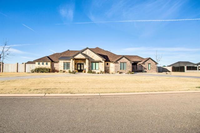 8818 County Road 6875, Lubbock, TX 79407 (MLS #201810071) :: Lyons Realty