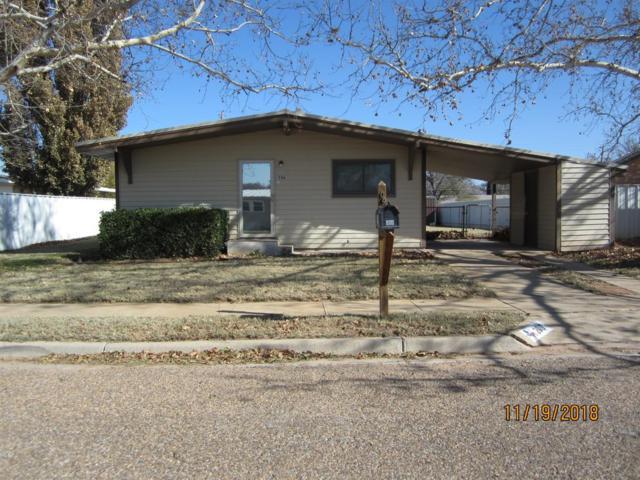 206 N Adams Avenue, Denver City, TX 79323 (MLS #201810131) :: Lyons Realty