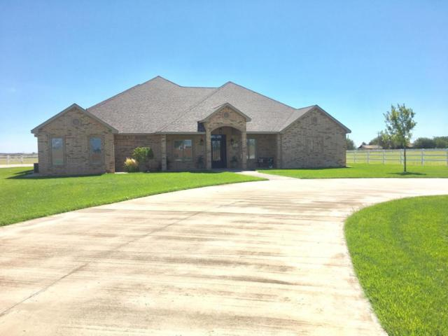 3309 SW 8th Street, Plainview, TX 79072 (MLS #201810628) :: The Lindsey Bartley Team