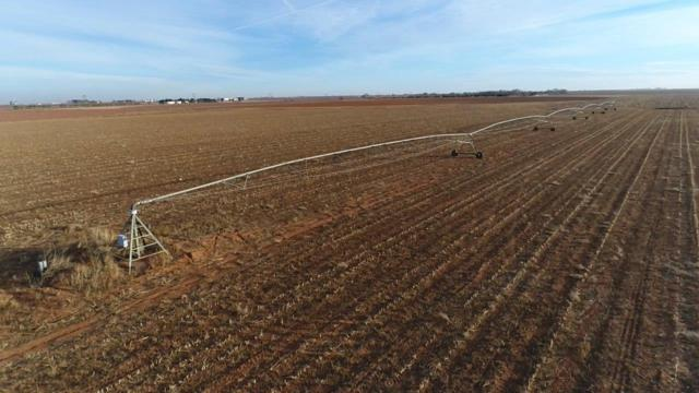 0 State Highway 114, Morton, TX  (MLS #201811017) :: The Lindsey Bartley Team