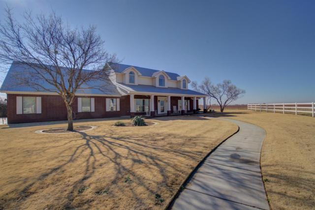 3401 Manioca Road, Lubbock, TX 79403 (MLS #201811020) :: Reside in Lubbock | Keller Williams Realty