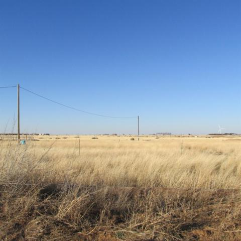 11308 County Road 6800, Lubbock, TX 79407 (MLS #201900006) :: The Lindsey Bartley Team