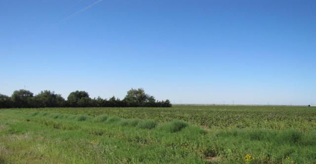 3 N Farm Road 179, Shallowater, TX 79363 (MLS #201900100) :: The Lindsey Bartley Team