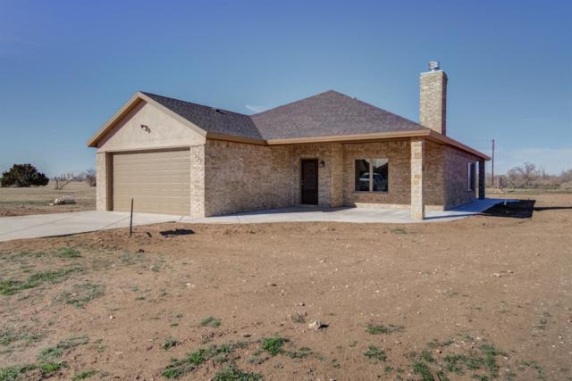 332 Palomino Drive, Lubbock, TX 79404 (MLS #201900410) :: The Lindsey Bartley Team