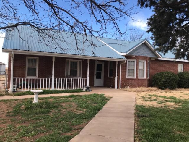 131 N State Highway 168, Smyer, TX 79367 (MLS #201900434) :: The Lindsey Bartley Team
