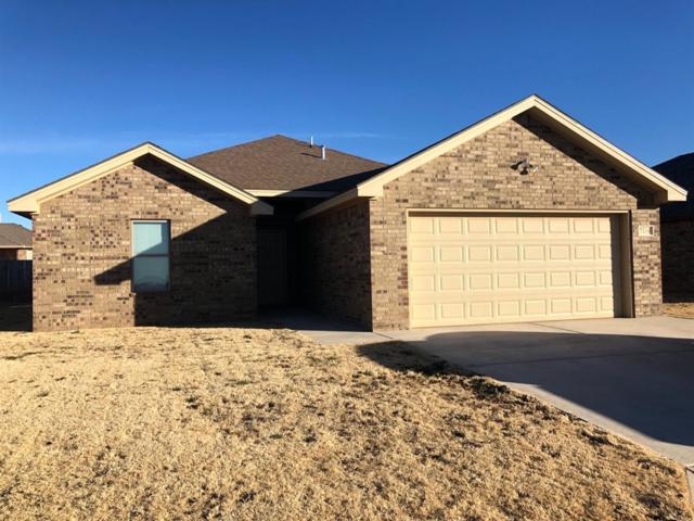 7518 87th Street, Lubbock, TX 79424 (MLS #201900484) :: Lyons Realty