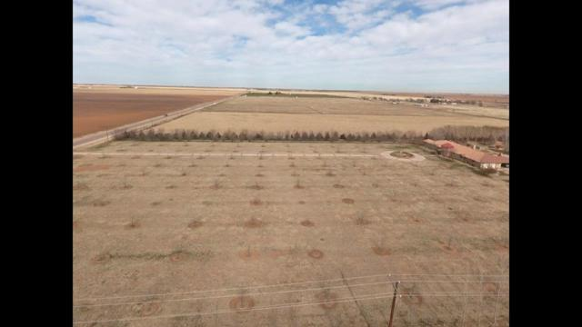 0 County Road, Levelland, TX  (MLS #201900684) :: Lyons Realty
