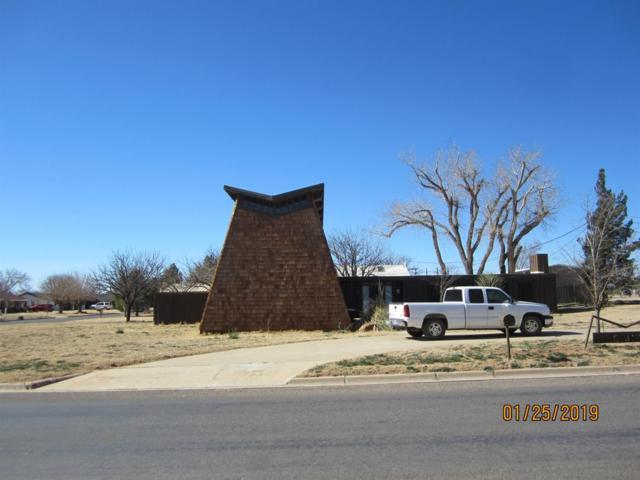211 S Jaycee Avenue, Denver City, TX 79323 (MLS #201900812) :: Reside in Lubbock | Keller Williams Realty