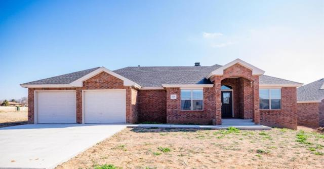 1102 Buffalo Court, Abernathy, TX  (MLS #201900815) :: The Lindsey Bartley Team