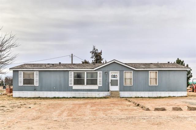 17203 County Road 2130, Lubbock, TX 79423 (MLS #201900935) :: McDougal Realtors