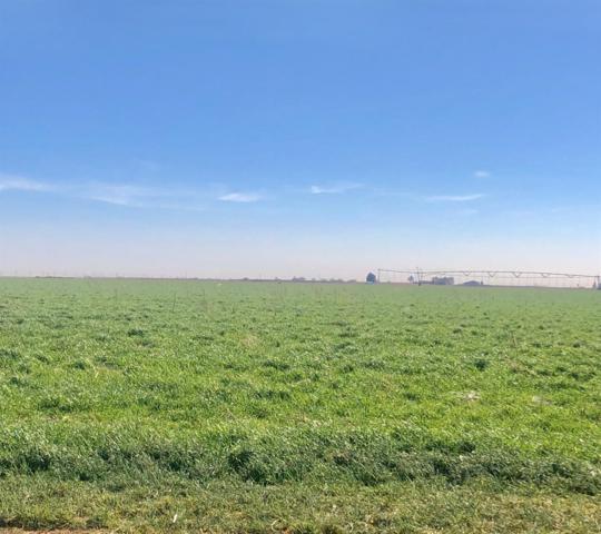 0 E Farm Road 1729, Lubbock, TX 79403 (MLS #201900964) :: McDougal Realtors