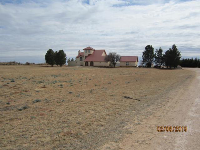 1940 County Road 390, Denver City, TX 79323 (MLS #201901219) :: Lyons Realty