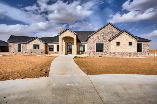 5006 County Road 7640, Lubbock, TX 79424 (MLS #201901229) :: Lyons Realty