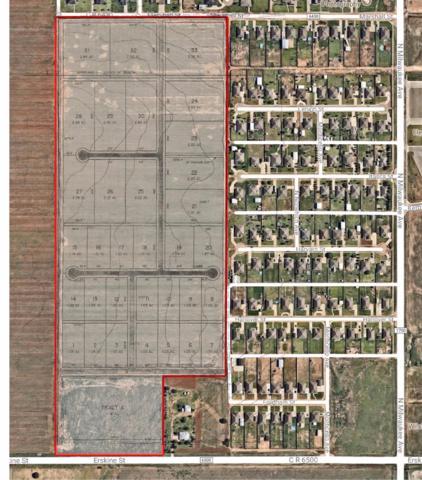 0 Erskine, Lubbock, TX 79416 (MLS #201901361) :: McDougal Realtors