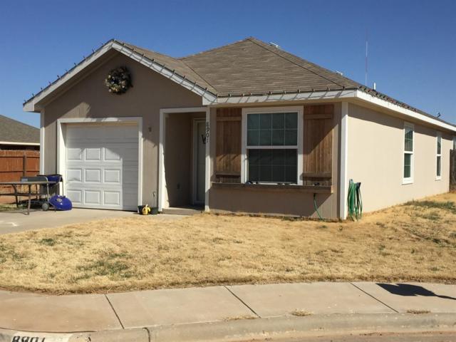 8901 Terrell Avenue, Lubbock, TX 79423 (MLS #201901547) :: Lyons Realty