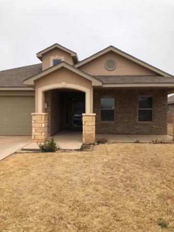 11107 Elmwood Avenue, Lubbock, TX 79424 (MLS #201901891) :: Lyons Realty