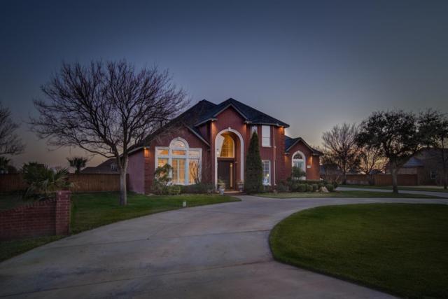 8603 County Road 6930, Lubbock, TX 79407 (MLS #201901895) :: Lyons Realty