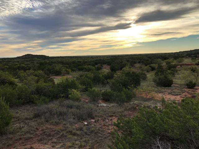 0 Us Highway 380, Aspermont, TX 79502 (MLS #201901936) :: The Lindsey Bartley Team