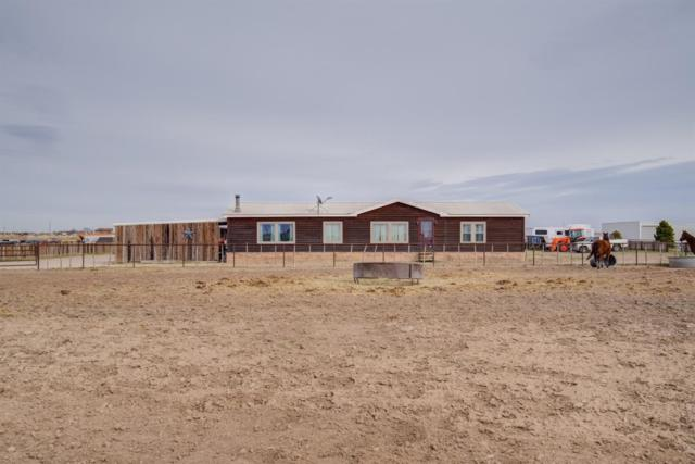 6005 Farm Road 2378, Lubbock, TX 79407 (MLS #201902029) :: Reside in Lubbock | Keller Williams Realty