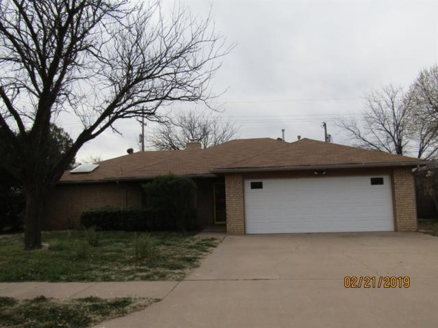 3205 94th Street, Lubbock, TX 79423 (MLS #201902103) :: Lyons Realty