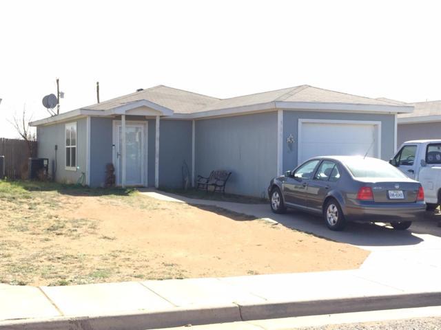 115 74th Street, Lubbock, TX 79404 (MLS #201902229) :: Lyons Realty