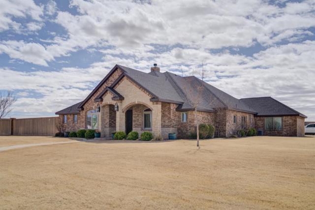 9025 County Road 6875, Lubbock, TX 79407 (MLS #201902376) :: McDougal Realtors