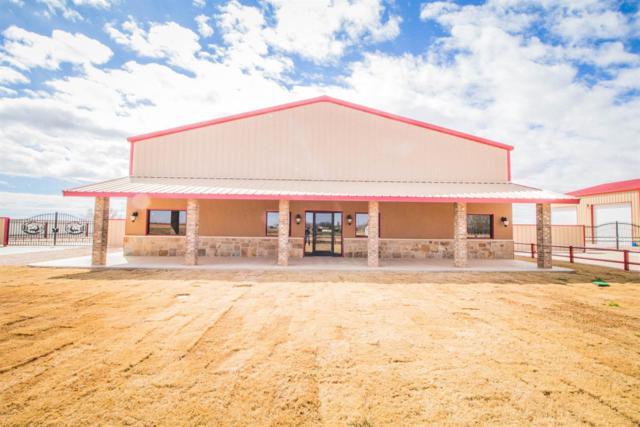 808 E County Road 7300, Lubbock, TX 79404 (MLS #201902506) :: McDougal Realtors