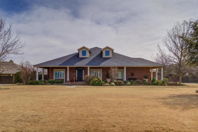 5503 County Road 7520, Lubbock, TX 79424 (MLS #201902698) :: McDougal Realtors