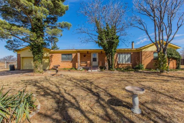 1501 E 82nd Street, Lubbock, TX 79404 (MLS #201902878) :: Reside in Lubbock | Keller Williams Realty