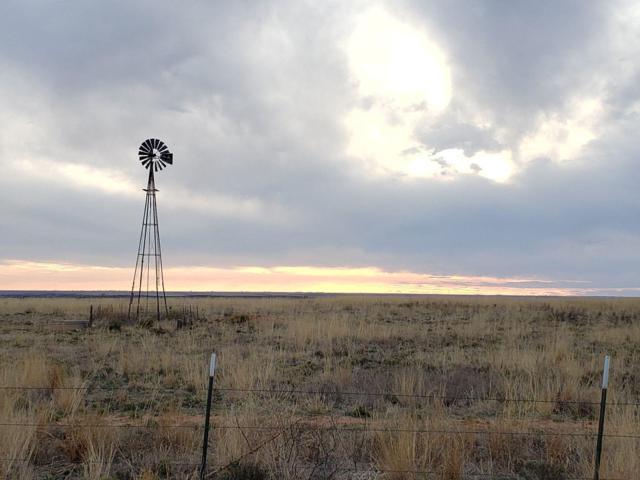 0 Farm Road 1490, Littlefield, TX 79339 (MLS #201902956) :: Reside in Lubbock | Keller Williams Realty