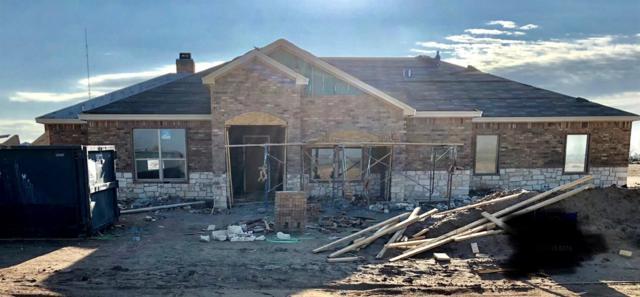 16909 County Road 2050, Lubbock, TX 79423 (MLS #201902995) :: Lyons Realty